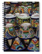 Mexican Flowerpots Spiral Notebook