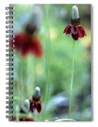Mexican Hat Flower Spiral Notebook