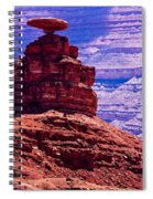 Mexican Hat Spiral Notebook