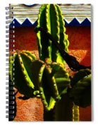 Mexican Style  Spiral Notebook