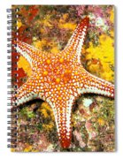 Mexico, Gulf Sea Star Spiral Notebook