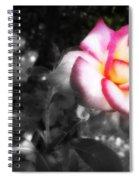 Mi Rosa Spiral Notebook