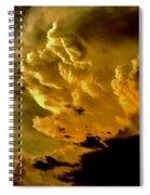 Michelangelo's Dream Spiral Notebook