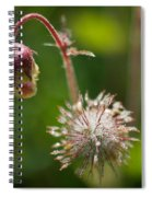 Microcosm Of Beauty Spiral Notebook