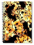 Microscopic Insecticide 3 Spiral Notebook