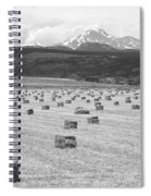 Mid June Colorado Hay  And The Twin Peaks Longs And Meeker Bw Spiral Notebook