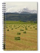 Mid June Colorado Hay  And The Twin Peaks Longs And Meeker Spiral Notebook