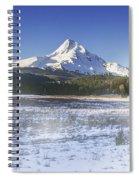 Mid-winter Morning Spiral Notebook