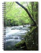 Middle Fork River Spiral Notebook