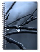 Middle Winter Blues Spiral Notebook