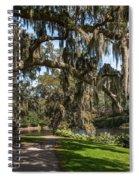 Middleton Live Oak Stretch Spiral Notebook