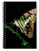 Midnight Butterfly Spiral Notebook