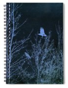 Midnight Flight Silhouette Blue Spiral Notebook