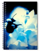 Midnight Gatherings Spiral Notebook