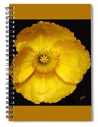 Midnight Poppy Spiral Notebook