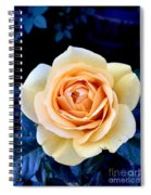 Midnight Rose Spiral Notebook