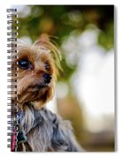 Mighty Dog Spiral Notebook