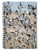 Migrating Snow Geese Spiral Notebook