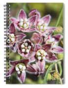Milk Weed Vine Flowers Spiral Notebook