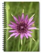 Milkweed Flower Spiral Notebook