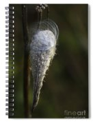 Milkweed In Autumn Spiral Notebook