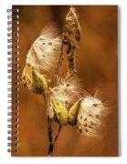 Milkweed Spiral Notebook