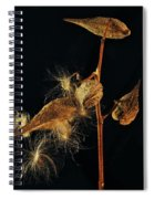 Milkweed Pods Spiral Notebook