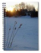 Milkweed Stems Winter Sunrise Spiral Notebook