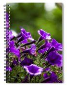 Mill Hill Inn Petunias Spiral Notebook