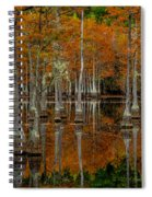 Mill Pond Reflections Spiral Notebook