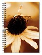 Mimic Spiral Notebook