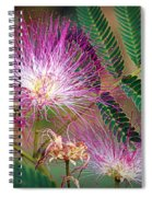 Mimosa's First Blooms Spiral Notebook
