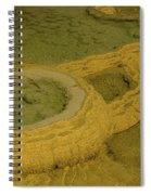 Minerva Terrace Detail 3 Spiral Notebook