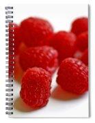 Mingling Spiral Notebook