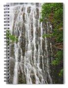 Mingo Falls Closeup Spiral Notebook