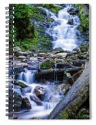 Mingo Falls Two Spiral Notebook