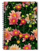 Mini Mums Autumn Tones By Kaye Menner Spiral Notebook