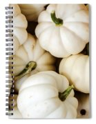 Mini White Pumpkins Spiral Notebook