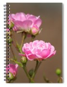 Miniature Pink Roses Spiral Notebook