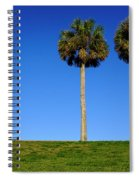 Minimal Palm Trees On A Hill In Saint Augustine Florida Spiral Notebook