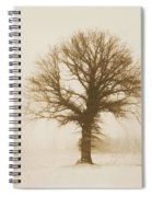 Minimal Winter Tree Spiral Notebook