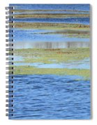Brazos Bend Wetland Abstract Spiral Notebook