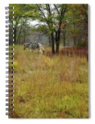 Miracle In The Meadow Spiral Notebook