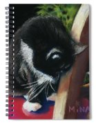 Kitty Chair Spiral Notebook