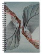 Mirror Image Spiral Notebook