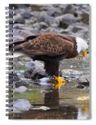 Mirror Mirror Spiral Notebook