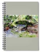 Mirror Pond Spiral Notebook