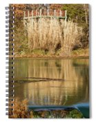 Mirror Spring 1 Spiral Notebook