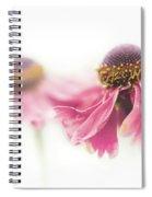 Mirrored Beauty Spiral Notebook