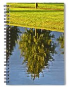 Mirroring Trees Spiral Notebook
